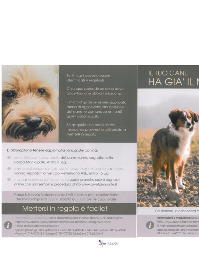Informativa microchip cani