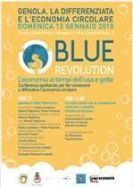 blue revolution locandina